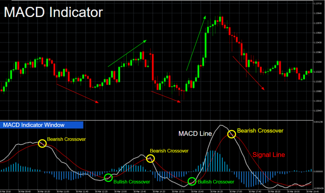 How to Use the MACD Indicator in | Advanced Guide